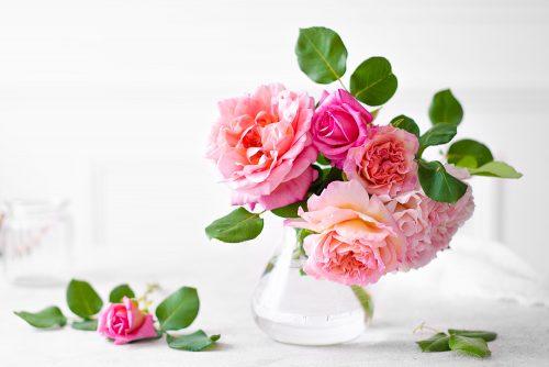 ©Pixellie-roses